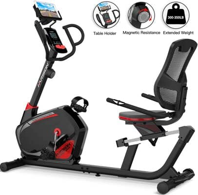 HARISON Magnetic Recumbent Exercise Bike