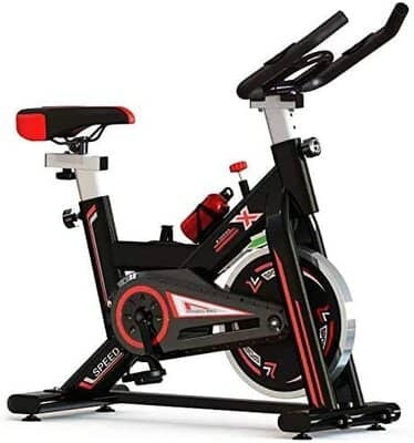 Pro Sport Exercise Bike